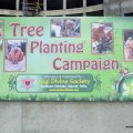 Tree Plantation @ Baroda